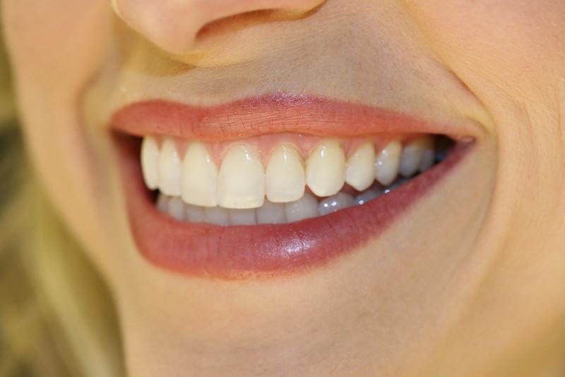 ученые выращивают зубы